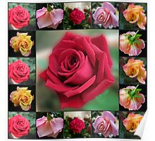 Dreamy Roses Collage Poster