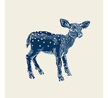 Dear Deer Indigo on Vanilla Photographic Print