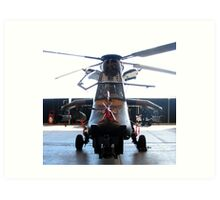 ARH Tigar Helicopter - Austrailan Army  Art Print
