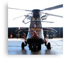 ARH Tigar Helicopter - Austrailan Army  Canvas Print