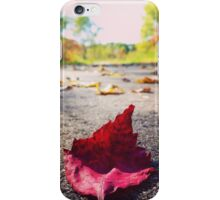 Endless Beauty iPhone Case/Skin
