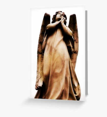 The Amazing Softness of Stone Greeting Card