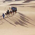 Ships of the desert by Peter Hammer