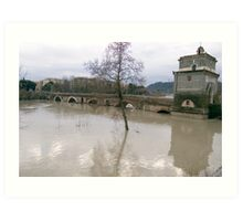 River in flood Art Print