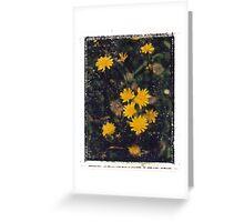 Weeds. Greeting Card