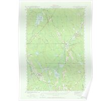 Maine USGS Historical Map Wytopitlock 306856 1941 62500 Poster