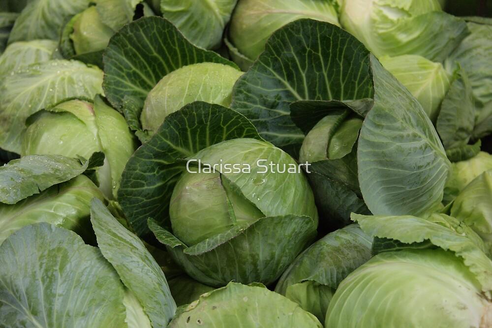 Fruits & Veggies IV:  English Green by Clarissa Stuart
