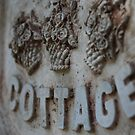 Cottage by Catherine Davis