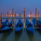 Venice, Italy. by Luka Skracic
