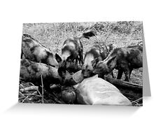 Wild Dog Kill Greeting Card