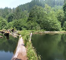 Esmond Lake Panorama by formalin6
