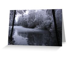 The Tranquility of Winter, Kandern, Germany 2008 Greeting Card