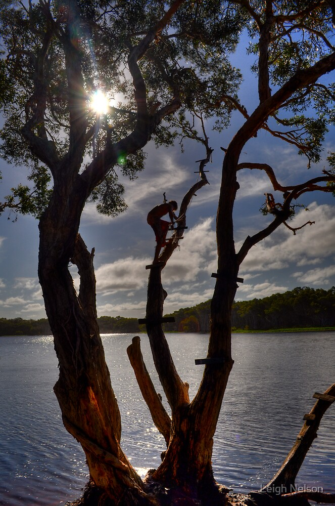 Rope Swing - Lake Ainsworth, Lennox Head, Australia. by Leigh Nelson