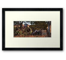 Rusted......Busted 2 Framed Print