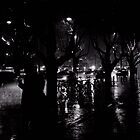 Rainy Night by raoulphoto