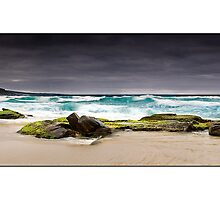 Honey Comb Beach Wide by Kirk  Hille