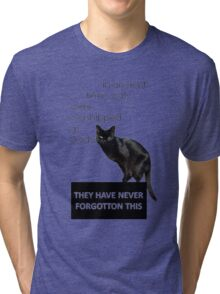 In Ancient Times Cats Were Worshipped As Gods Tri-blend T-Shirt