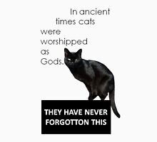 In Ancient Times Cats Were Worshipped As Gods Womens Fitted T-Shirt