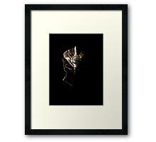 Skyrim Dawnguard Framed Print