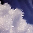 Ice Crystals I by Victoria John Ritterbush