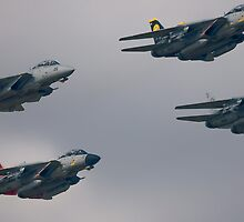 F-14D Tomcatters Last Flight  by Andy Mueller