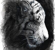 Patience - White Tiger by DanielleTrudeau