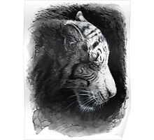 Patience - White Tiger Poster