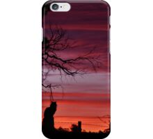 Cat amongst the sunset iPhone Case/Skin