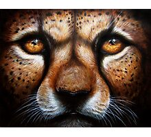 Save Me - Cheetah with Pleading Eyes Photographic Print
