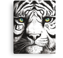Beautiful - Tiger With Blue Green Eyes Canvas Print