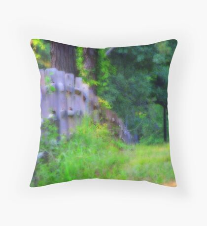 The Wooden Fence Throw Pillow
