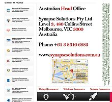 Netsuite Ecommerce by synapsesolution