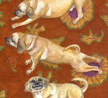 Buddha Dog Does Doga by joga