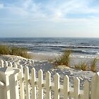 Fence on the beach by Ronee van Deemter