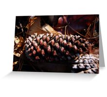 Pine Cones and Winter Greeting Card