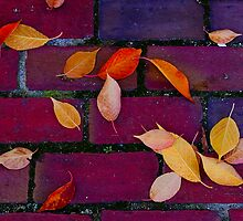 Urban Sidewalk Collage by Richard VanWart