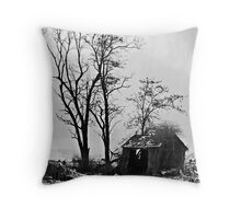 Shelter of a Suspicious Nature Throw Pillow