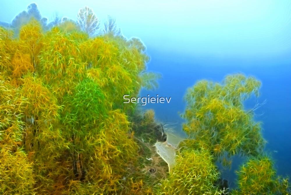 Autumn landscape, trees in a fog by Sergieiev