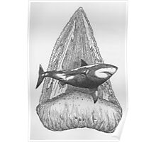 A Shark's Tooth... Poster