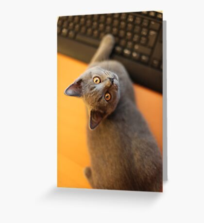Got an email ? Greeting Card