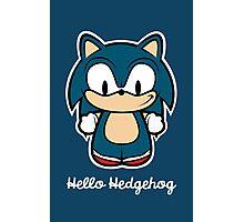Hello Hedgehog Photographic Print