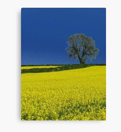 Portrait of an Oak Tree ( Blue ) Canvas Print