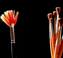 Brush and Brushes by carlosporto