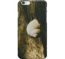 Big snail on a tree trunk iPhone Case/Skin