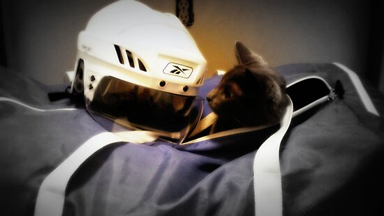 Hockey Cat by valentine