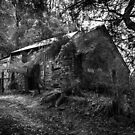 Old Miners Cottage, Walhalla  by Christine  Wilson Photography