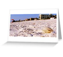 Shell Greeting Card