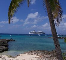 Grand Cayman Scene by hunter22375