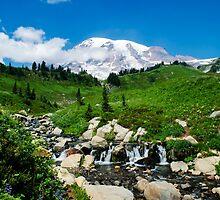 Mount Rainier and Edith Creek by lascelles795