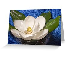 Magnolia on Blue Greeting Card